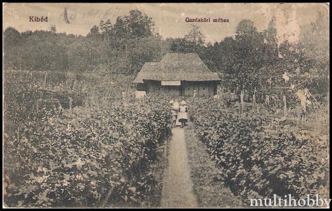 Carte Postala din Chibed - Judetul Mures