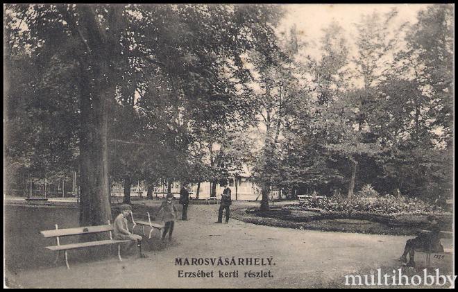 Carte Postala din targu Mures